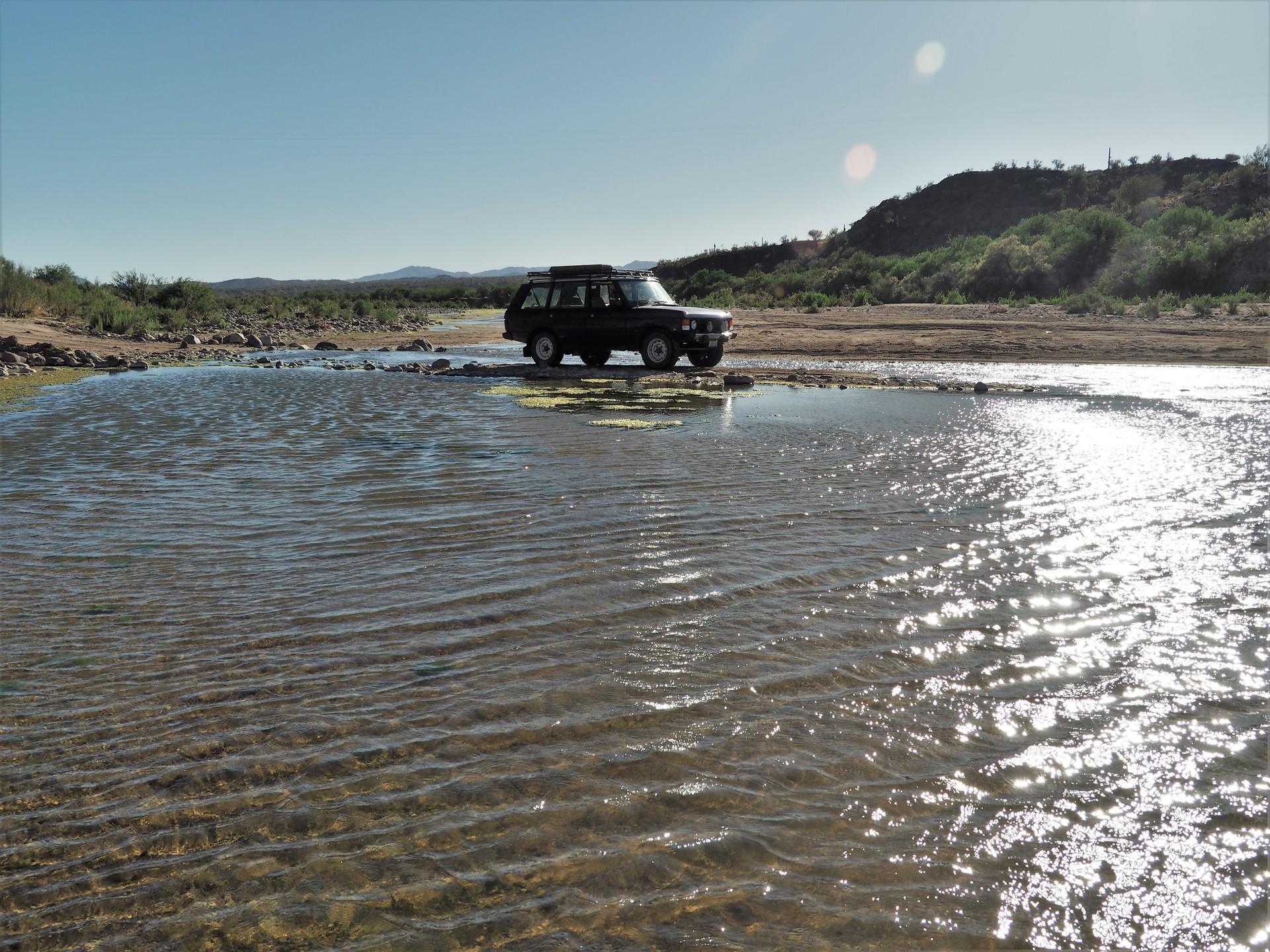 Аризона исподтишка, или КоронаРото